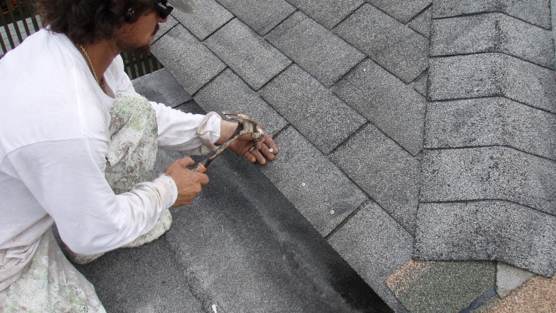Roof Shingle Repairs in Hawaii