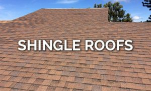 Roofing Company for Shingle Roofs